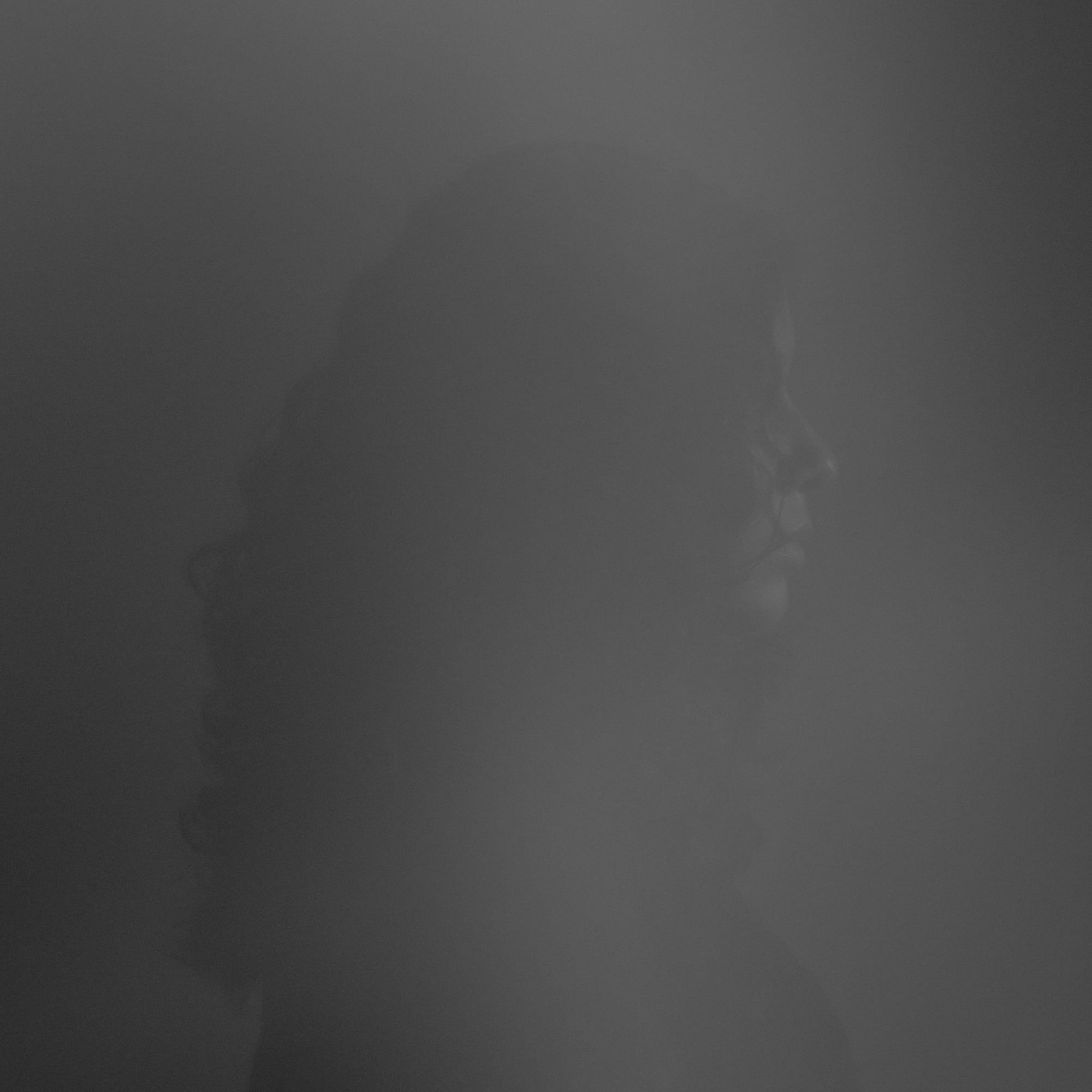 Sumi Anjuman Self Portrait